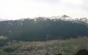 Το ψηλότερο χωριό της Ελλάδας (αλλά και των Βαλκανίων), είναι χτισμένο σε υψόμετρο 1.600 μέτρων! - Φωτογραφία 12