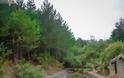 Το ψηλότερο χωριό της Ελλάδας (αλλά και των Βαλκανίων), είναι χτισμένο σε υψόμετρο 1.600 μέτρων! - Φωτογραφία 16
