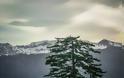 Το ψηλότερο χωριό της Ελλάδας (αλλά και των Βαλκανίων), είναι χτισμένο σε υψόμετρο 1.600 μέτρων! - Φωτογραφία 18