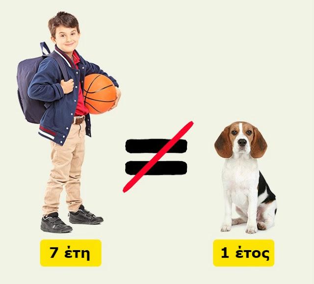 Δείτε πως να υπολογίσετε την ηλικία ενός σκύλου ή μιας γάτας σε ανθρώπινο χρόνια... - Φωτογραφία 2