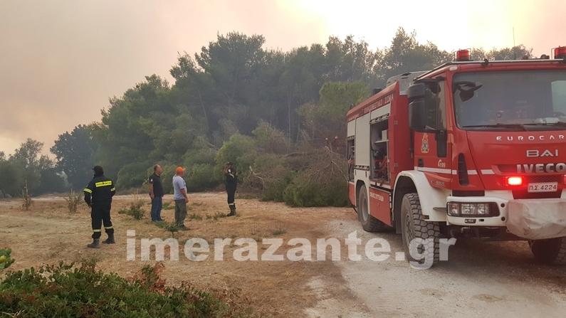 ΖΑΚΥΝΘΟΣ: 5 φωτιές σε 1μιση ώρα! Όλοι μιλούν για εμπρησμό!! - Φωτογραφία 8