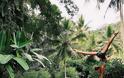 FOUR SEASONS RESORT SAYAN UBUD, BALI Στις σουίτες του πιο εντυπωσιακού Resort στον κόσμο - Φωτογραφία 35