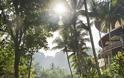 FOUR SEASONS RESORT SAYAN UBUD, BALI Στις σουίτες του πιο εντυπωσιακού Resort στον κόσμο - Φωτογραφία 48