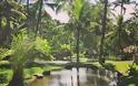 FOUR SEASONS RESORT SAYAN UBUD, BALI Στις σουίτες του πιο εντυπωσιακού Resort στον κόσμο - Φωτογραφία 50