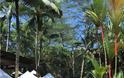 FOUR SEASONS RESORT SAYAN UBUD, BALI Στις σουίτες του πιο εντυπωσιακού Resort στον κόσμο - Φωτογραφία 59