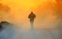 Οι πυρκαγιές κατακαίνε την χώρα και την κυβέρνηση…