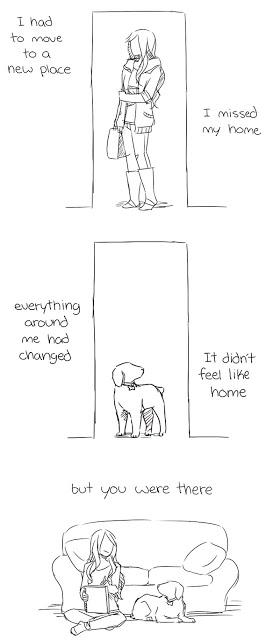 Έχασε τον σκύλο της και σχεδίασε ένα κόμικ που θα σε κάνει να δακρύσεις - Φωτογραφία 5