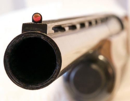Έκλεψε το όπλο ηλικιωμένου - Φωτογραφία 1