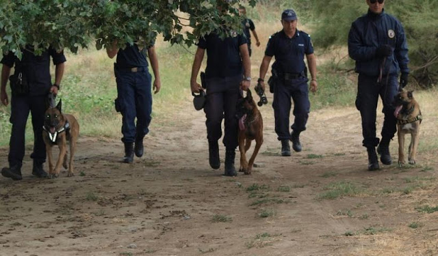 Αναβρασμός στο Τμήμα Σκύλων Ελληνικής Αστυνομίας - Φωτογραφία 1