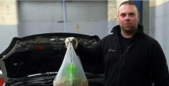 Αγόρασε ένα νέο αυτοκίνητο -  Δείτε τι βρήκε στο εσωτερικό του! [photo] - Φωτογραφία 2