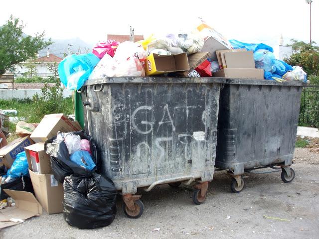 Αμάζευτοι πολλοί κάδοι με σκουπίδια στον Μύτικα. - Φωτογραφία 2