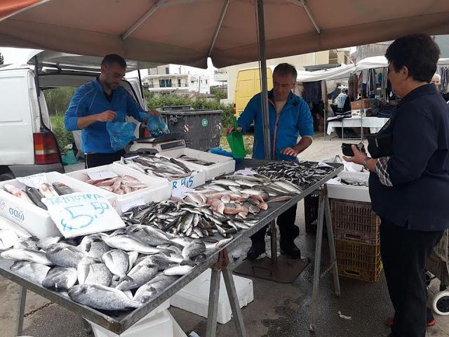 ΣΗΜΕΡΑ ΔΕΥΤΕΡΑ: Μια βόλτα στην Λαϊκή Αγορά της ΒΟΝΙΤΣΑΣ (ΦΩΤΟ: Στέλλα Λιάπη) - Φωτογραφία 106