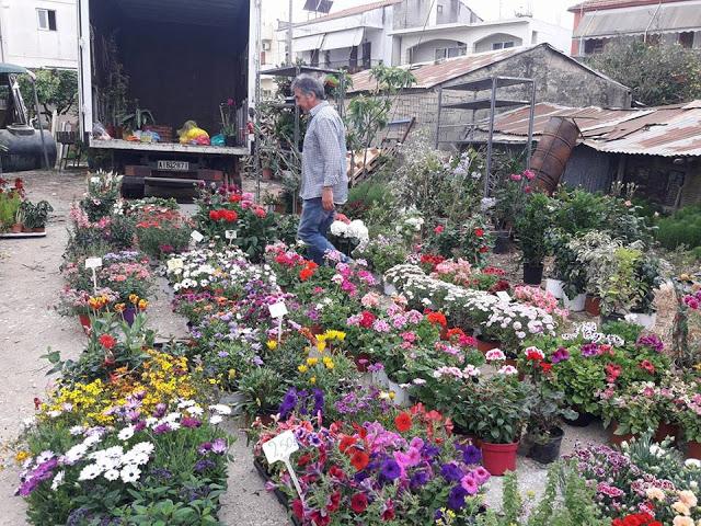 ΣΗΜΕΡΑ ΔΕΥΤΕΡΑ: Μια βόλτα στην Λαϊκή Αγορά της ΒΟΝΙΤΣΑΣ (ΦΩΤΟ: Στέλλα Λιάπη) - Φωτογραφία 127