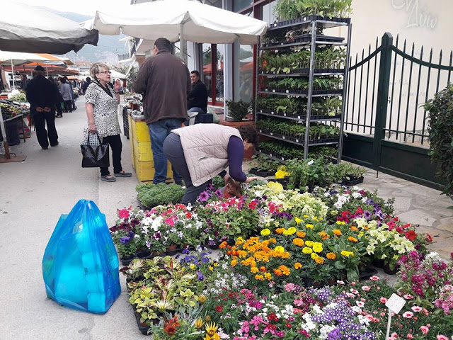 ΣΗΜΕΡΑ ΔΕΥΤΕΡΑ: Μια βόλτα στην Λαϊκή Αγορά της ΒΟΝΙΤΣΑΣ (ΦΩΤΟ: Στέλλα Λιάπη) - Φωτογραφία 39