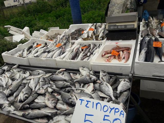 ΣΗΜΕΡΑ ΔΕΥΤΕΡΑ: Μια βόλτα στην Λαϊκή Αγορά της ΒΟΝΙΤΣΑΣ (ΦΩΤΟ: Στέλλα Λιάπη) - Φωτογραφία 48