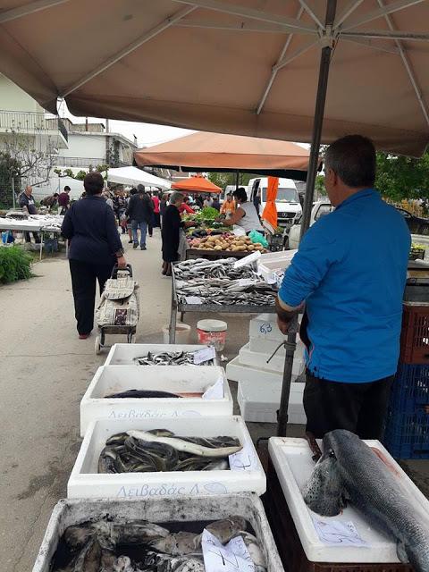 ΣΗΜΕΡΑ ΔΕΥΤΕΡΑ: Μια βόλτα στην Λαϊκή Αγορά της ΒΟΝΙΤΣΑΣ (ΦΩΤΟ: Στέλλα Λιάπη) - Φωτογραφία 85