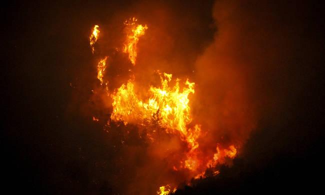 Φωτιά - Ηλεία: Δεν υπάρχει ενεργό μέτωπο στη Φρίξα – Σε επιφυλακή η Πυροσβεστική - Φωτογραφία 1