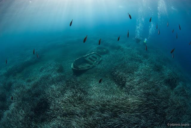 Πρωτοβουλία για τη δημιουργία θαλάσσιας προστατευόμενης περιοχής Σαντορίνης - Φωτογραφία 2