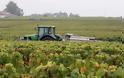 Κορίνα Μεντζελοπούλου: Μια μεγιστάνας του κρασιού προσγειώνεται στη Μπορντώ - Φωτογραφία 2