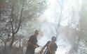 Πισσώνας: Μαίνεται η πυρκαγιά, αλλά δεν απειλεί σπίτια - Δείτε Εικόνες! - Φωτογραφία 5