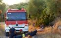 Πυροσβεστική για την φωτιά στο Πούρνο: «Αναζητείται για να συλληφθεί χειριστής αγροτικού μηχανήματος»