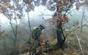 ΓΕΣ: Το σημαντικό έργο του Τάγματος Εκκαθάρισης Ναρκοπεδίων Ξηράς (ΦΩΤΟ) - Φωτογραφία 10