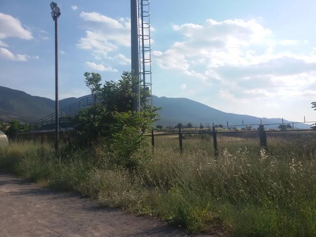 Ζούγκλα από χορτάρια το γήπεδο Ερυθρων Αττικης [photos] - Φωτογραφία 3