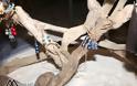 Σύλλογος Γυναικών Αστακού: Με επιτυχία η έκθεση με Γυναικείες δημιουργίες και η παρουσίαση χορών από το γυμναστήριο ENERGYM - ΦΩΤΟ Make art - Φωτογραφία 49