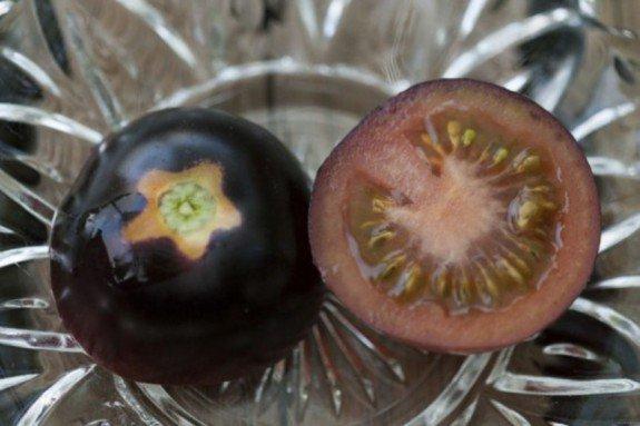 Η ντομάτα που τα έβαψε μαύρα… - Φωτογραφία 1