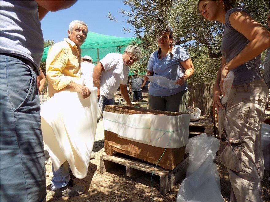 Ιεράπετρα: Υποχώρησε το έδαφος και βρέθηκε μινωικός τάφος! - Φωτογραφία 3