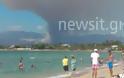 Εκκενώνουν προληπτικά οικισμό στην Εύβοια - Συμπαγές δάσος καταστρέφουν οι φλόγες