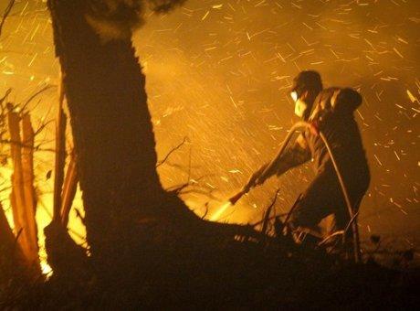 Ολονύχτια μάχη με τις φλόγες και τον άνεμο στην Εύβοια - Εκκενώθηκαν χωριά - Φωτογραφία 1
