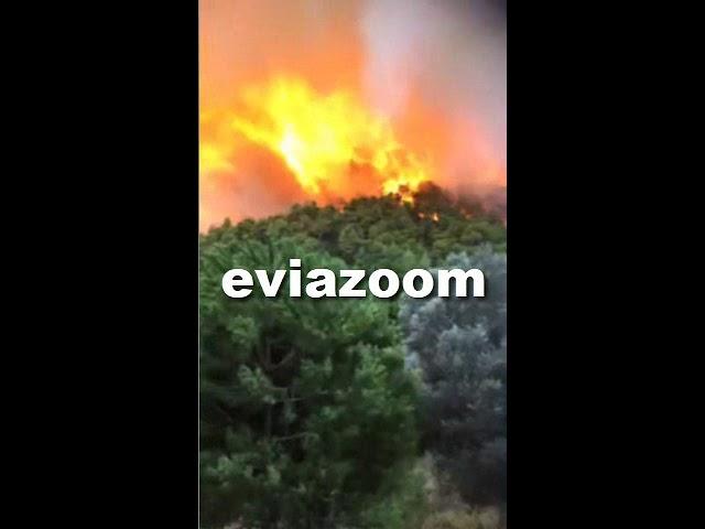Ολονύχτια μάχη με τις φλόγες και τον άνεμο στην Εύβοια - Εκκενώθηκαν χωριά - Φωτογραφία 2