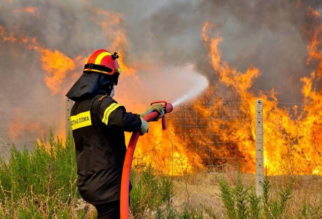 Οι σπίθες πυρκαγιών και το δίκτυο ηλεκτροδότησης - Φωτογραφία 1
