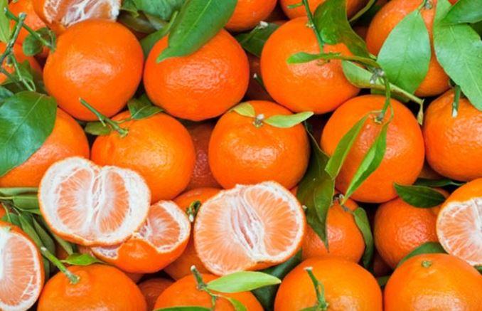 Τι θρεπτικά συστατικά μας προσφέρουν τα μανταρίνια - Φωτογραφία 1