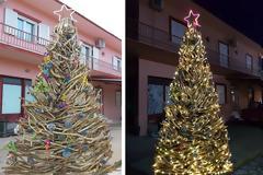 Πρωτότυπο οικολογικό Χριστουγεννιάτικο Δέντρο στο ΒΑΡΝΑΚΑ | ΦΩΤΟ