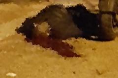 Άγρια δολοφονία Ελληνα στo Μοσχάτο λίγες ώρες μετά την δολοφονία Αλβανού στο κέντρο της Αθήνας