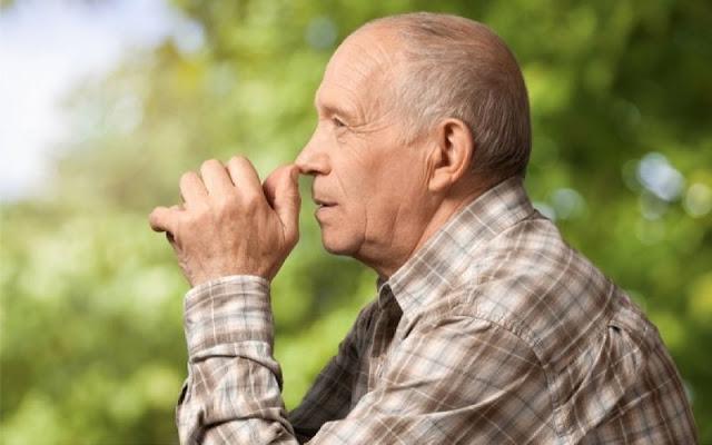 Έτσι θα εμποδίσετε το Αλτσχάιμερ μέσω της διατροφής! - Φωτογραφία 1