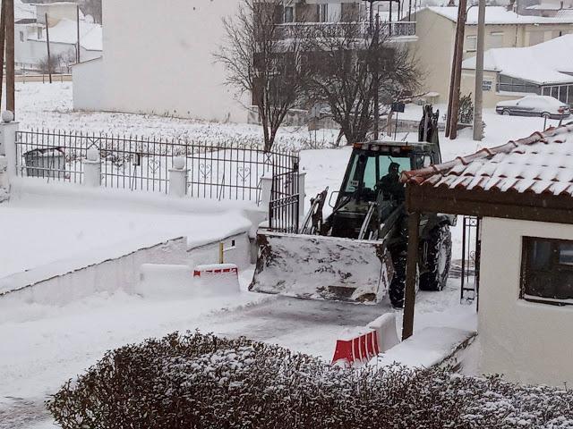 Εντυπωσιακές φωτό: Ο Στρατός Ξηράς στα Χιόνια - Φωτογραφία 2