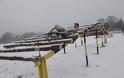 Εντυπωσιακές φωτό: Ο Στρατός Ξηράς στα Χιόνια - Φωτογραφία 11
