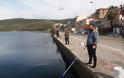 Γέμισε γαρίδες και γλώσσες η θάλασσα της Αμφιλοχίας | Μικροί-μεγάλοι στο ψάρεμα με την απόχη στο χέρι | ΦΩΤΟ - Φωτογραφία 12