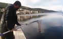 Γέμισε γαρίδες και γλώσσες η θάλασσα της Αμφιλοχίας | Μικροί-μεγάλοι στο ψάρεμα με την απόχη στο χέρι | ΦΩΤΟ - Φωτογραφία 14