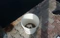 Γέμισε γαρίδες και γλώσσες η θάλασσα της Αμφιλοχίας | Μικροί-μεγάλοι στο ψάρεμα με την απόχη στο χέρι | ΦΩΤΟ - Φωτογραφία 18