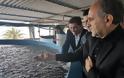 Απόστολος Κατσιφάρας: Οι ιχθυοκαλλιέργειες στην Αιτωλοακαρνανία πυλώνας στήριξης της απασχόλησης και της οικονομίας στη Δυτική Ελλάδα - Φωτογραφία 2