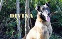 Αποστρατεύτηκε η Divina - Αναλαμβάνει η Dagi
