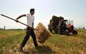 Ρύθμιση οφειλών για αγρότες: Ελάχιστη δόση τα 30 ευρώ και κούρεμα των προσαυξήσεων κατά 100%
