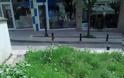 Γρεβενά, η πράσινη πόλη. Τόσο πράσινη που υπάρχουν δύο πιθανότητες.. -(Γράφει αναγνώστης) - Φωτογραφία 2