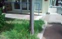 Γρεβενά, η πράσινη πόλη. Τόσο πράσινη που υπάρχουν δύο πιθανότητες.. -(Γράφει αναγνώστης) - Φωτογραφία 3