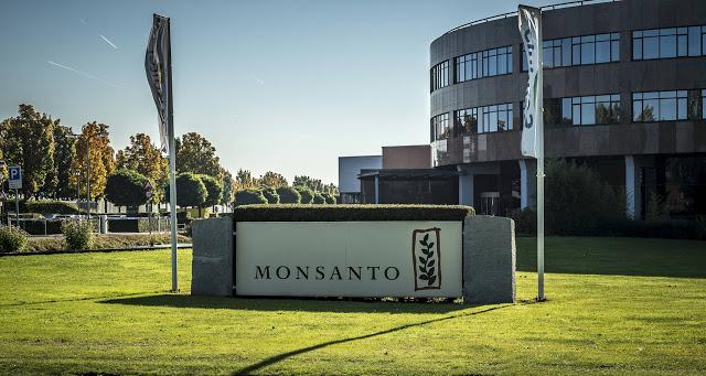 Δύο εκατομμύρια δολάρια καλείται να πληρώσει η Monsanto σε ζευγάρι καρκινοπαθών! - Φωτογραφία 1