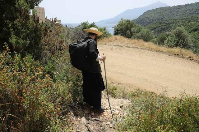 12049 - Η διαδρομή Βατοπαίδι - Παντοκράτορος από το μονοπάτι (φωτογραφίες) - Φωτογραφία 31